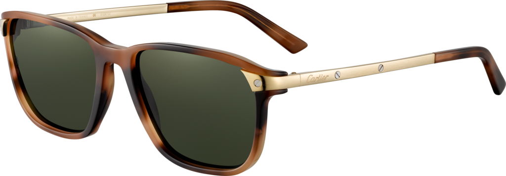 Santos de Cartier sunglassesBrown tortoiseshell composite, champagne golden finish, green polarized lenses