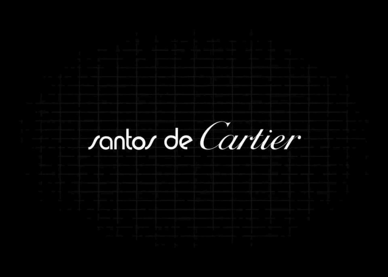 banner video santos 4